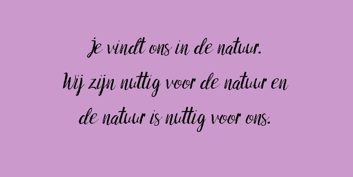 https://natuurboerenijs.nl/wp-content/uploads/2020/10/natuurboeren-paarskopie.jpg